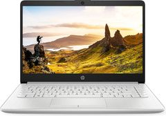 HP 14s-cs3009tu Laptop (10th Gen Core i5/ 8GB/ 1TB 256GB SSD/ Windows 10)