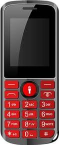 GreenBerry GB300