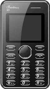 GreenBerry M1