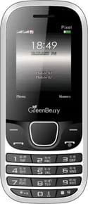 GreenBerry Pixel